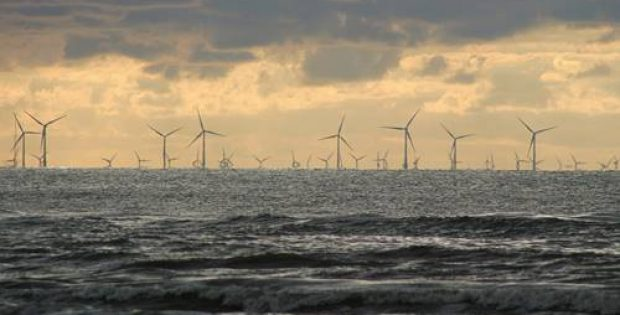 Dutch and Danish power firms bid for New Jersey offshore wind projects